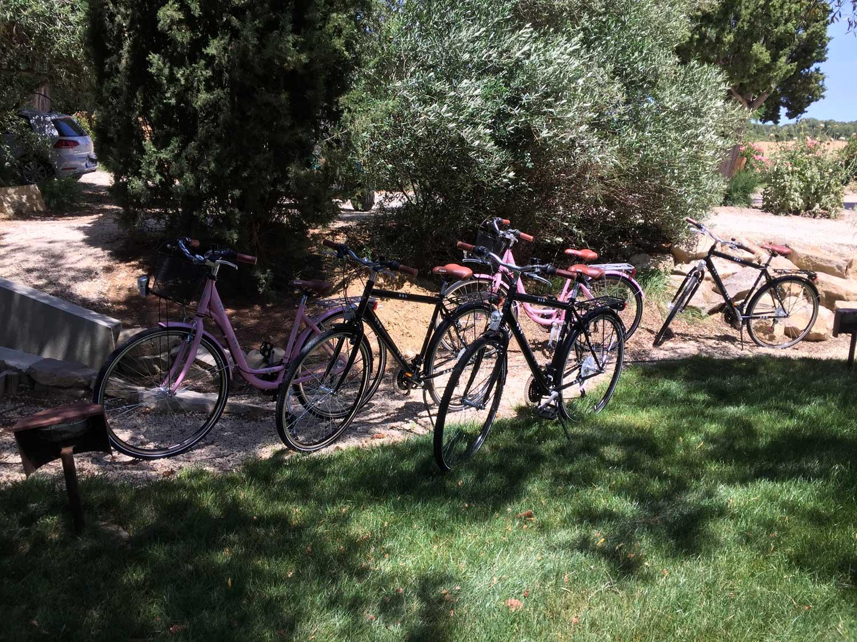 Vélos pour découvrir la Région